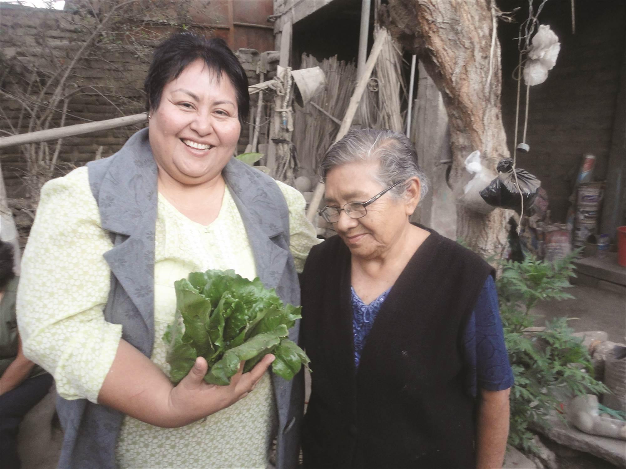 Creation of a women's bio garden in Peru